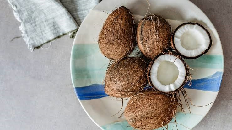 coconut-fiber-benefits